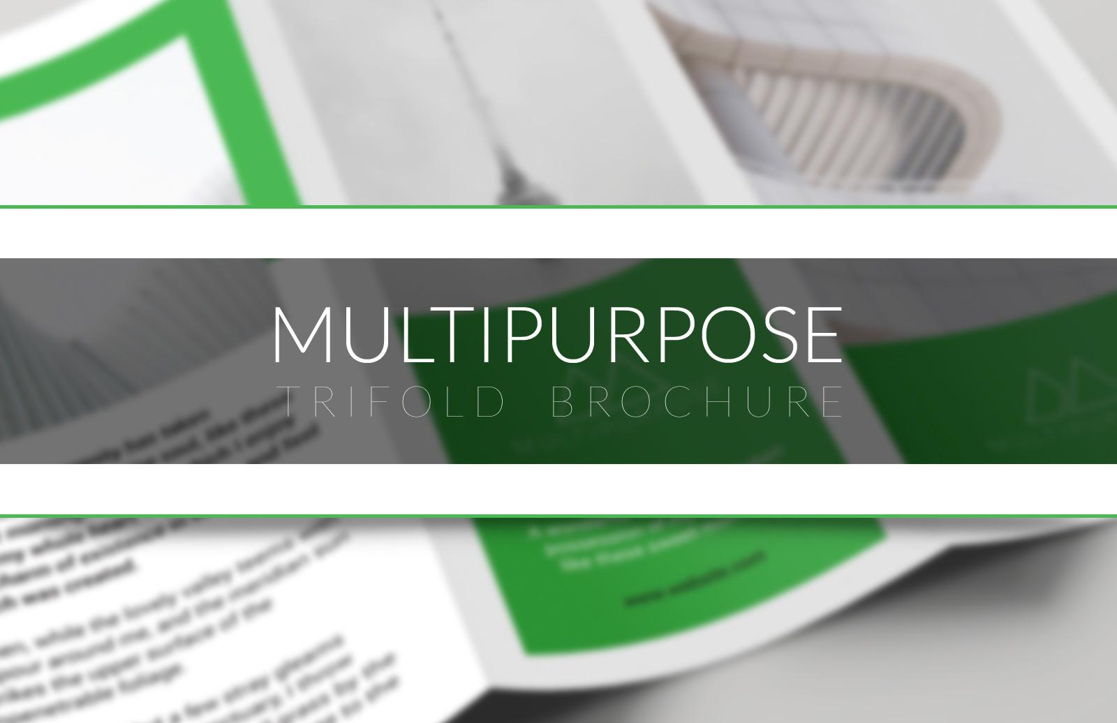 Multipurpose Trifold Brochure 1