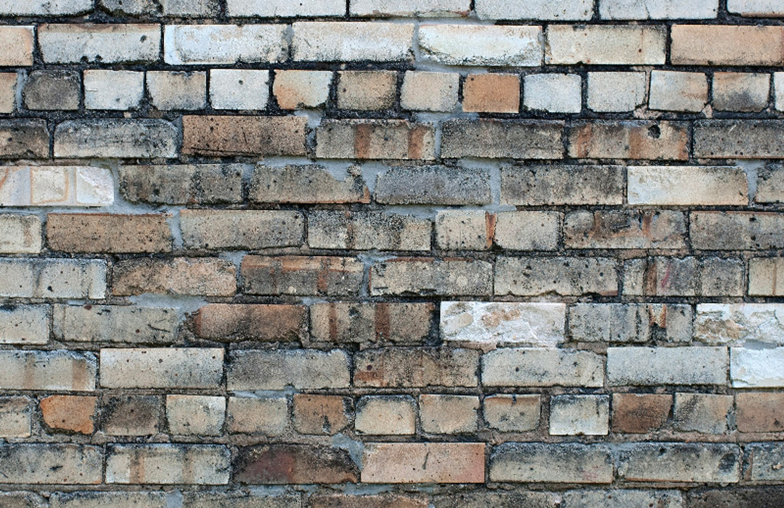Old  Brick  Wall  Textures 800X518 1