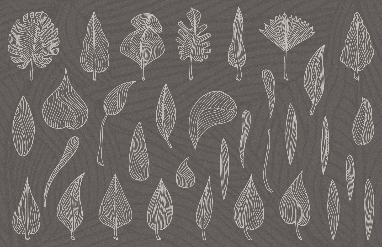 Organic Leaves Vector Elements