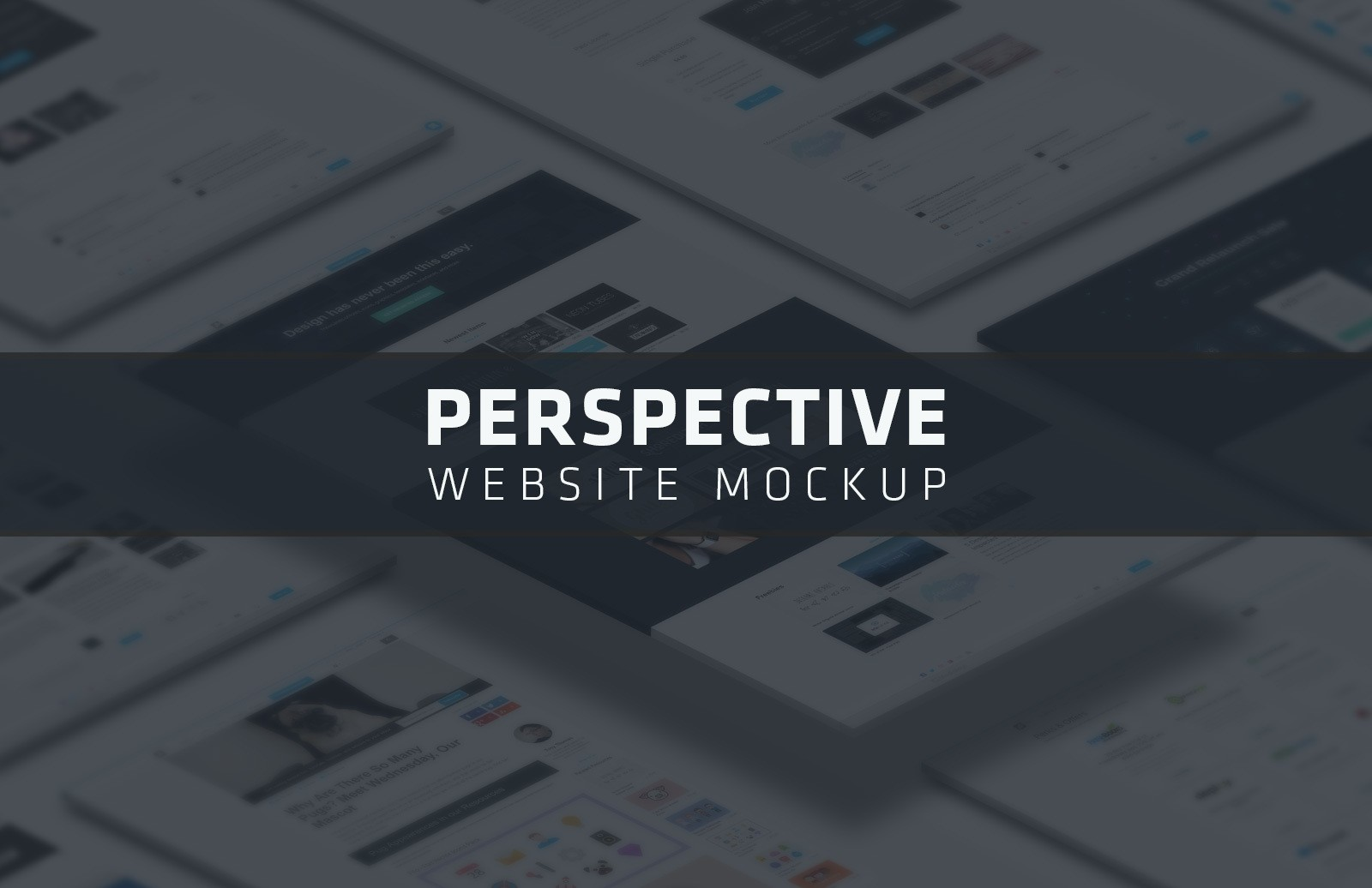 Large Perspective Website Mockup Preview 1