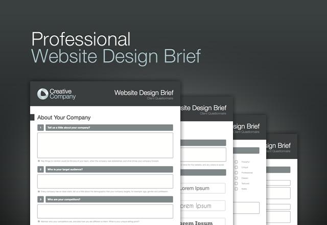 Professional  Website  Design  Brief1
