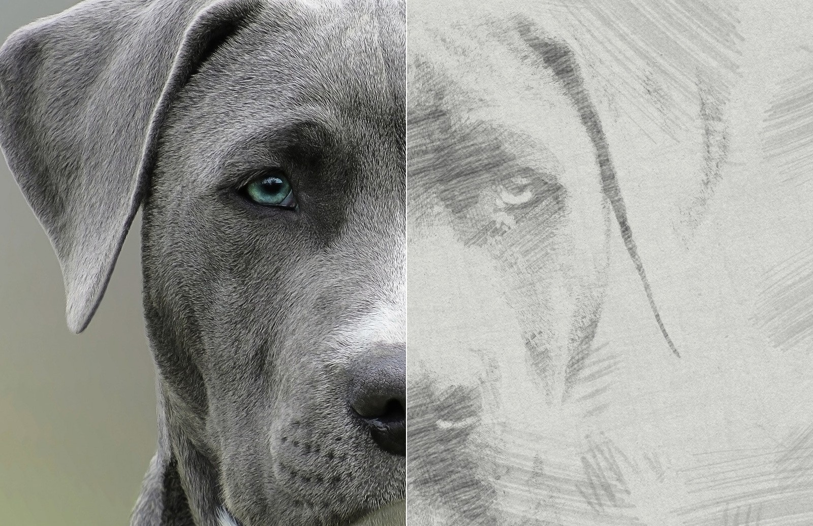 Realistic Pencil Drawing Effect 2