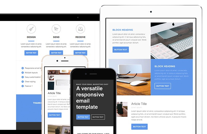 Responsive Newsletter Email Template  Medialoot