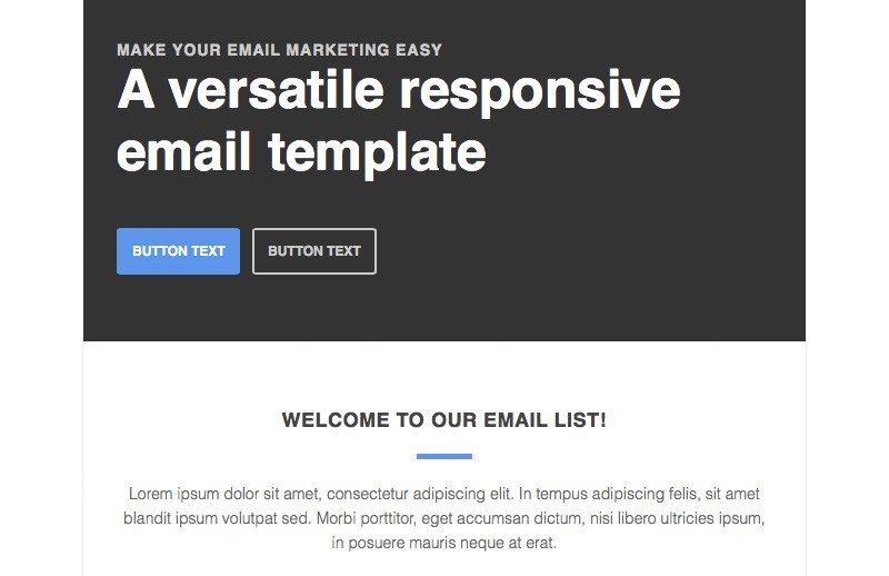 Responsive Newsletter Email Template 2