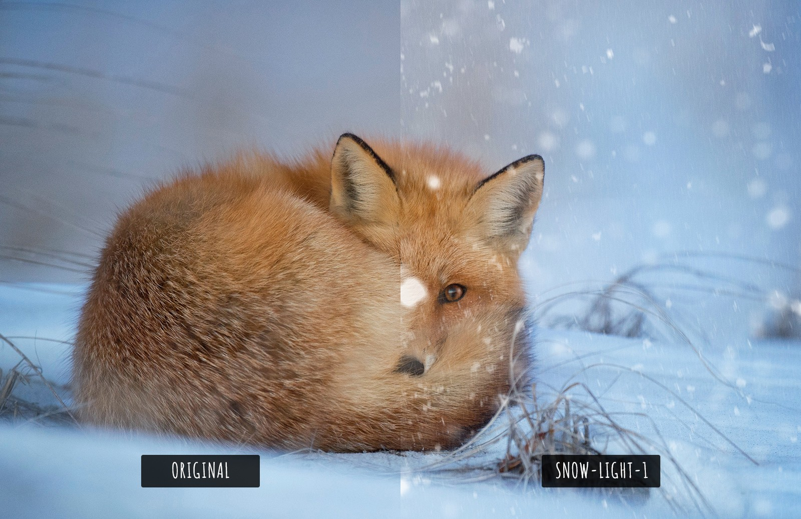 Large Snow  Overlays  Preview 5