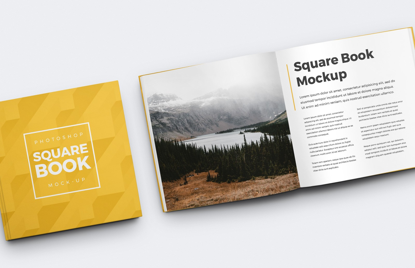 Square Book Mockup Preview 1