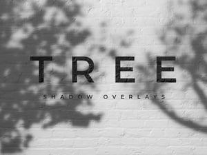 Outdoors Tree Shadow Overlays 1