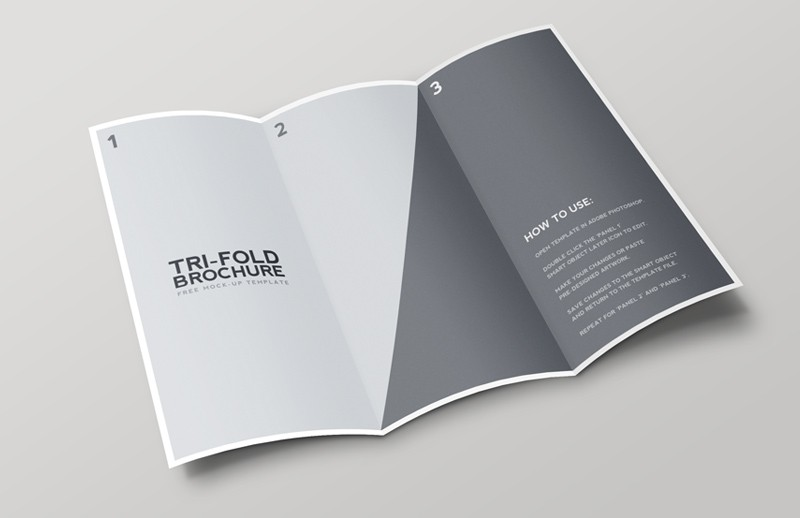 Large Tri  Fold  Brochure  Mockup 2  Preview 2