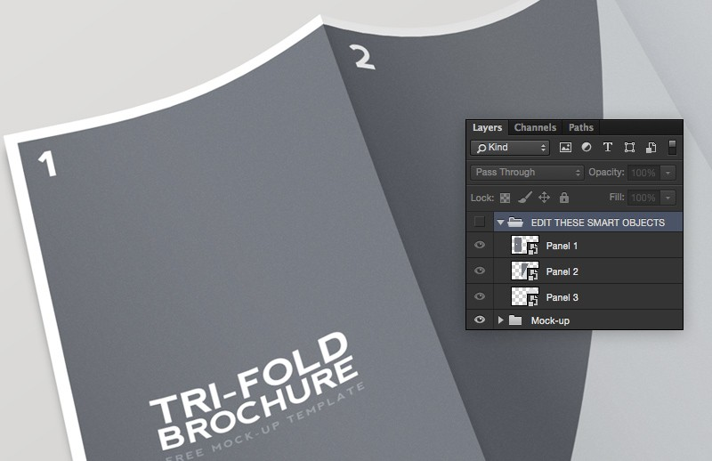 Large Tri  Fold  Brochure  Mockup 2  Preview 3