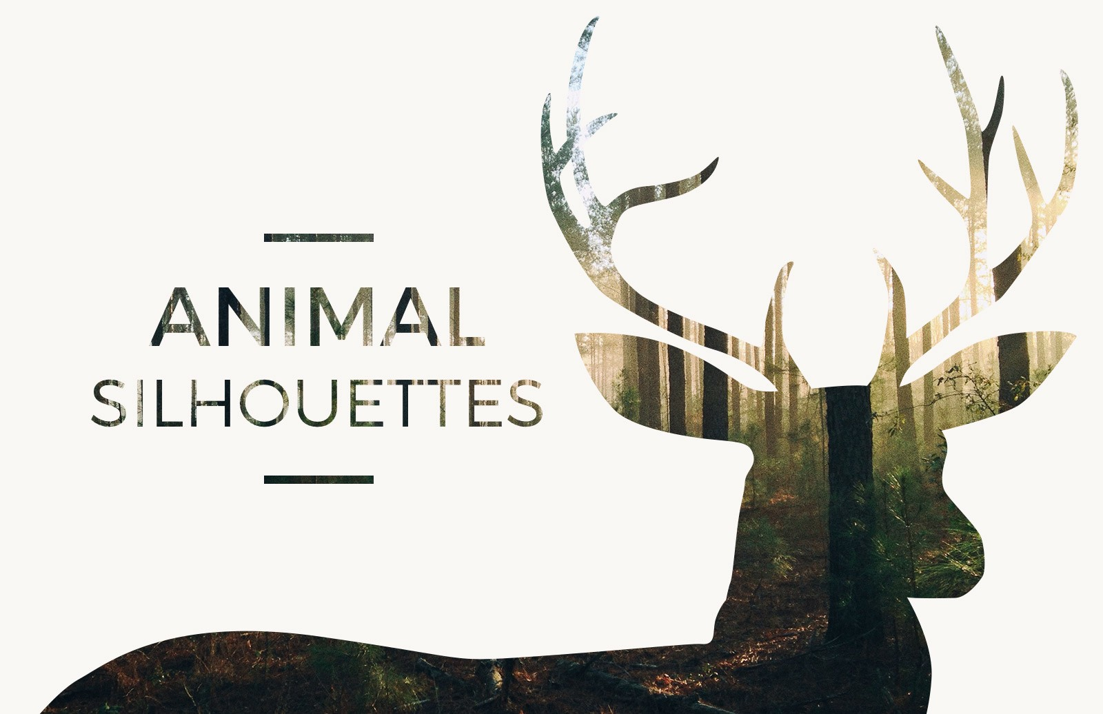 Large Vector  Animal  Silhoeuttes  Preview 1