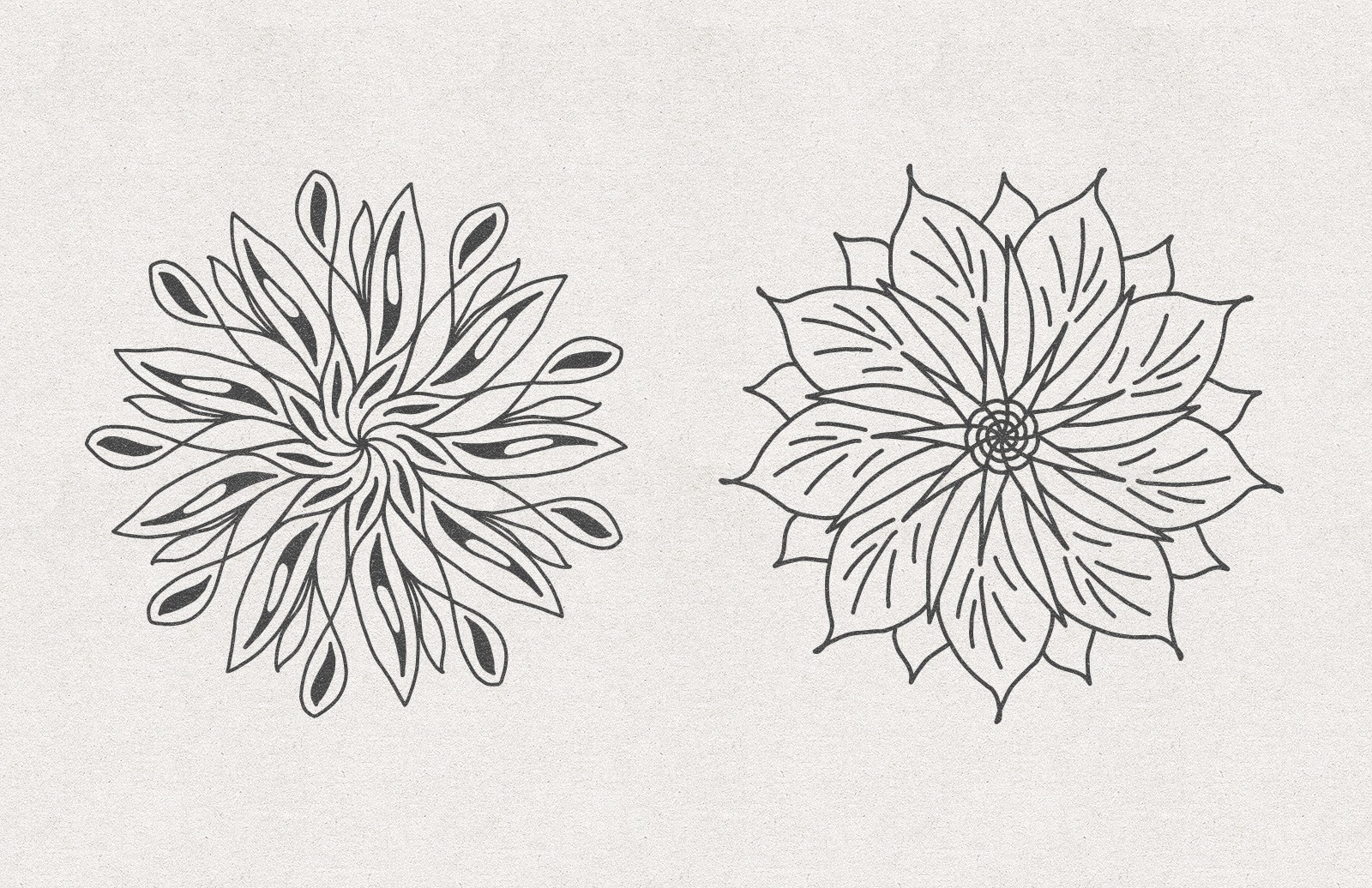 Vector Floral Radial Illustrations