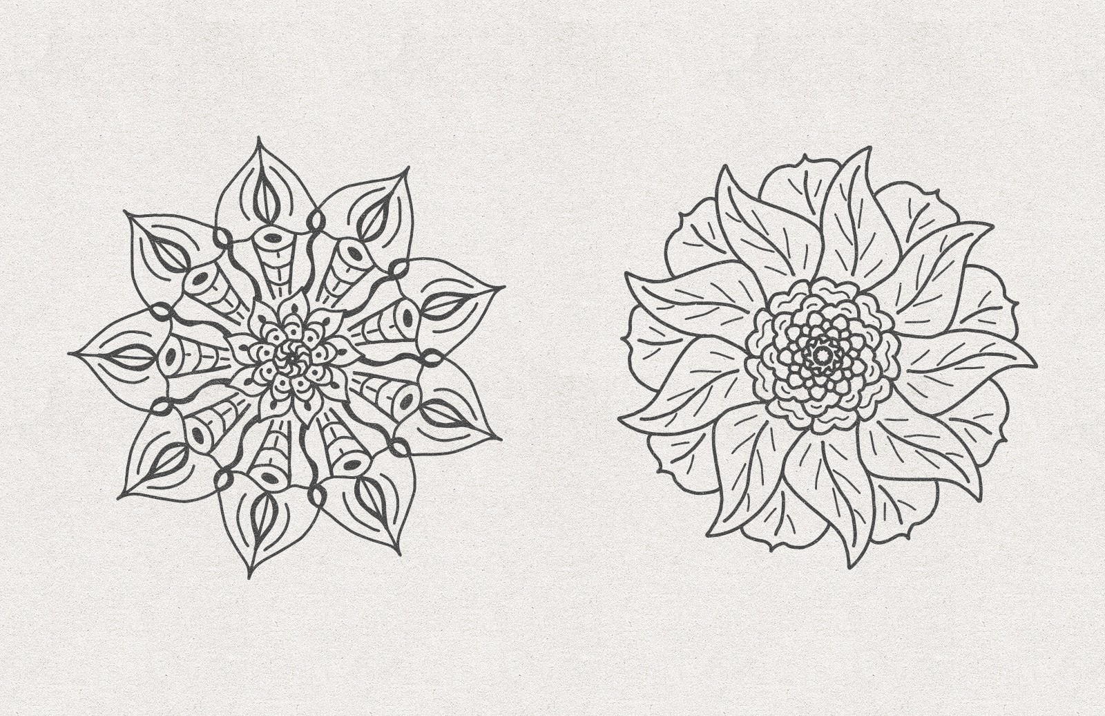 Vector Floral Radial Illustrations