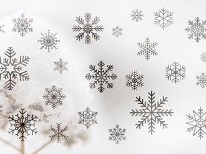 Vector Snowflakes 1