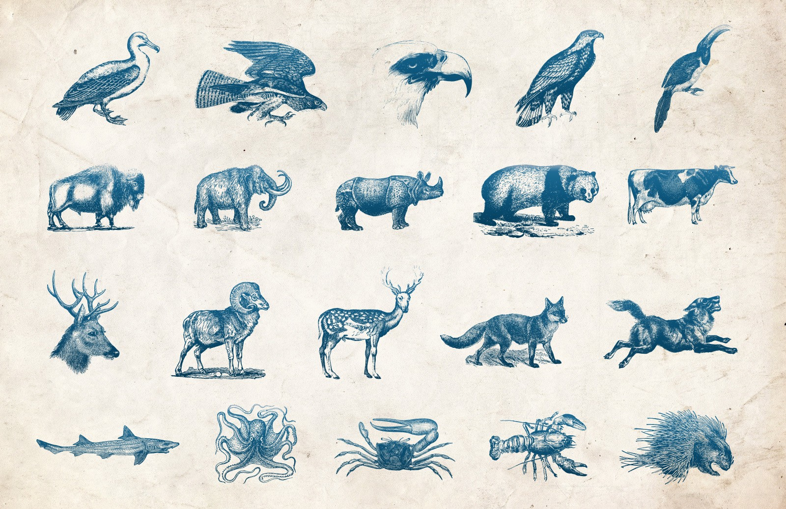 Vector Vintage Animals 2