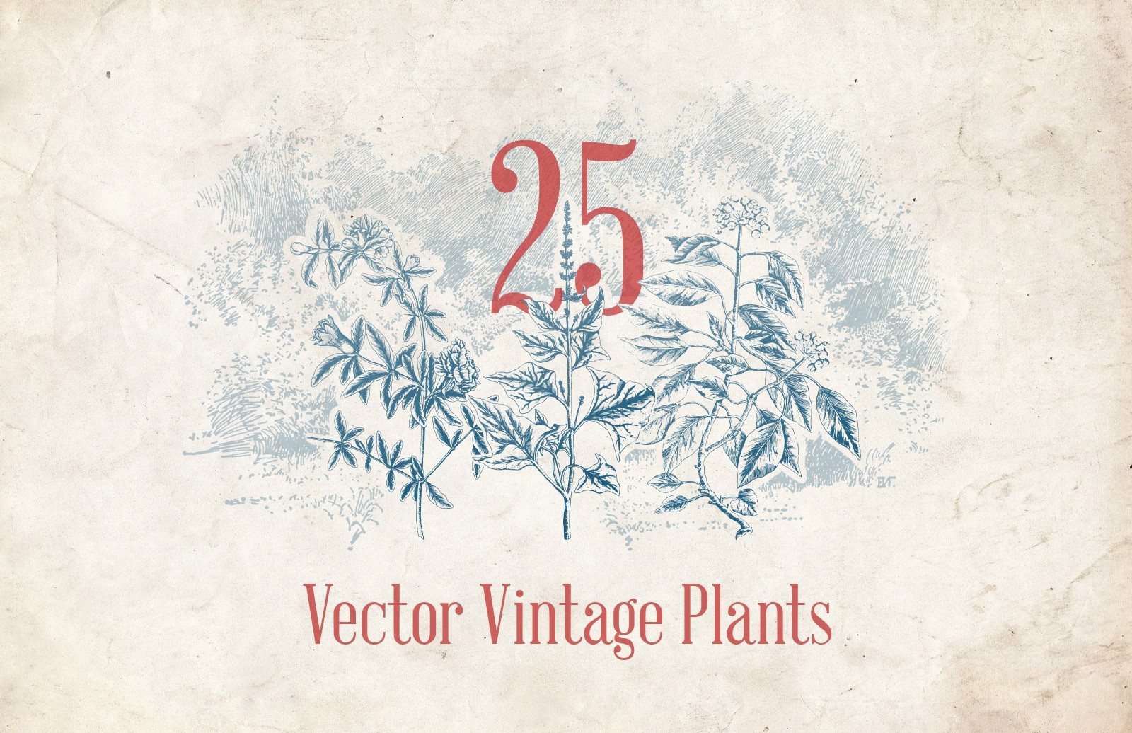 Vector Vintage Plants Preview 1