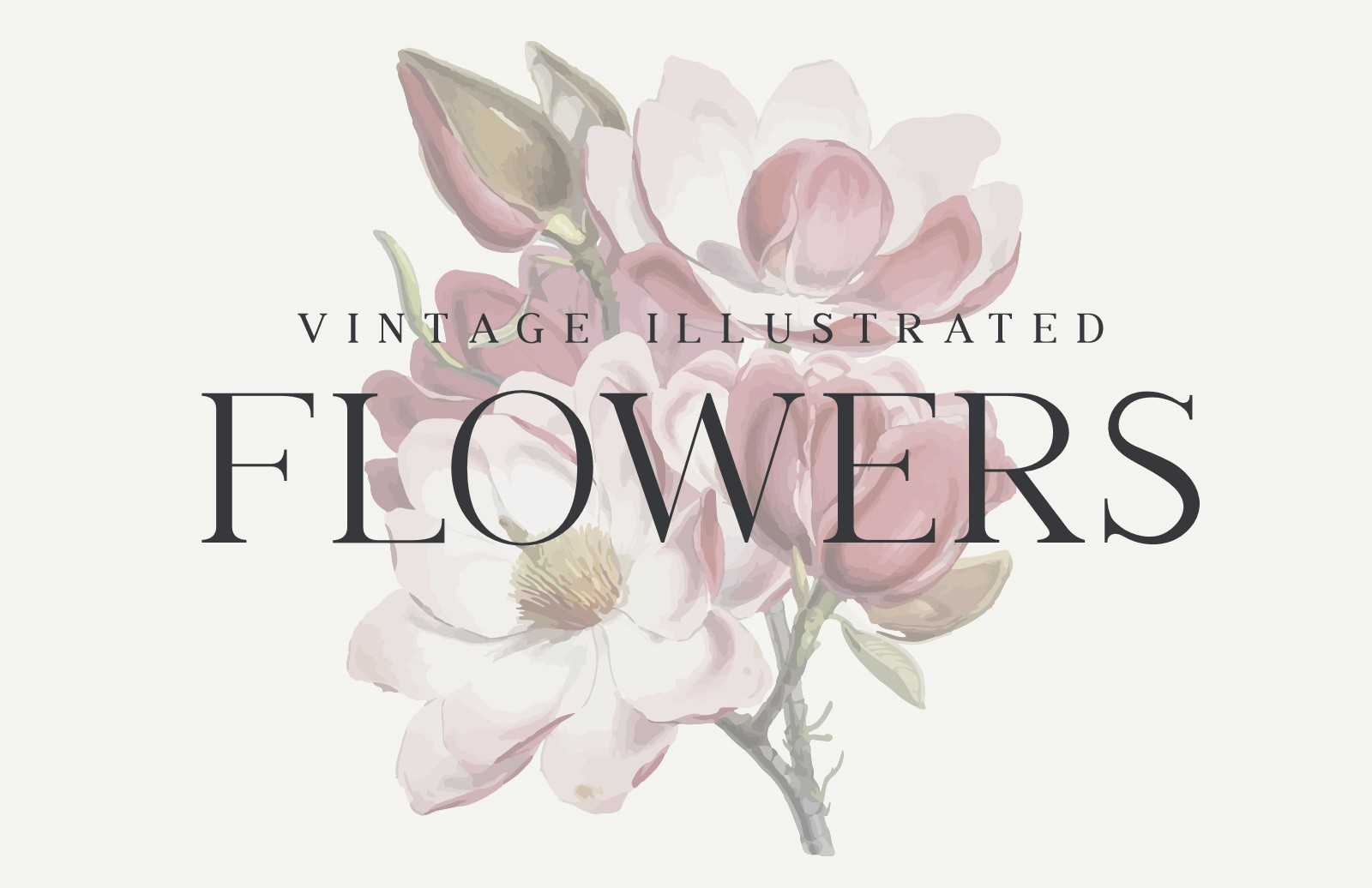 Vintage Illustrated Flowers Preview 1