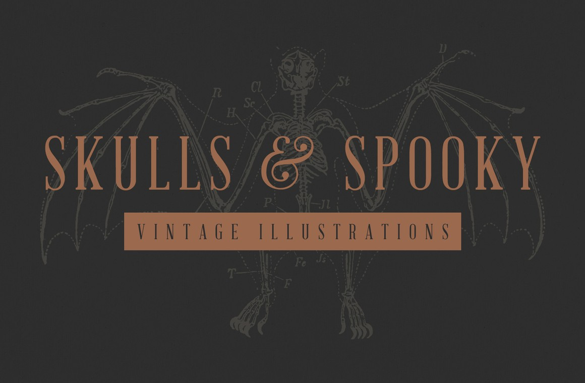 Vintage Skulls & Spooky Illustrations