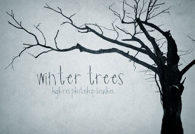 Winter  Trees  Preview1